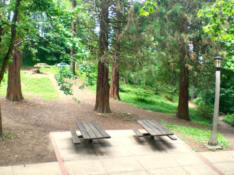 Washington Park Playground8.jpg