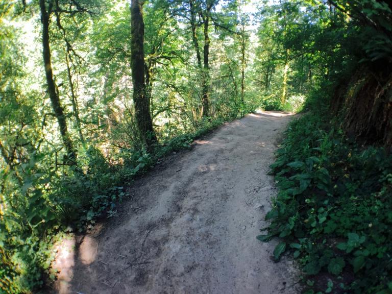 アッパー・マクレイ・パークのハイキングトレイル風景