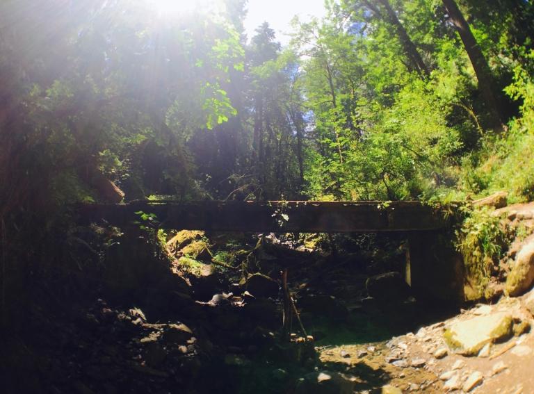 アッパー・マクレイ・パークでウィッチズキャッスルまでハイキング中にある小川