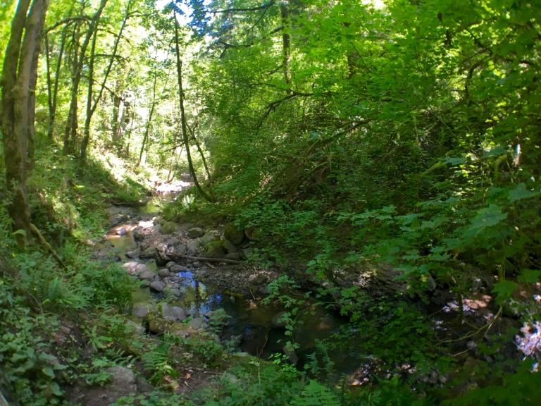 アッパー・マクレイ・パークでウィッチズキャッスルまでハイキング中の風景
