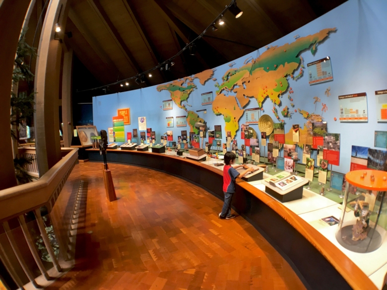 ポートランドのワシントンパークにある世界森林センター(World Forestry Center)で学ぶ