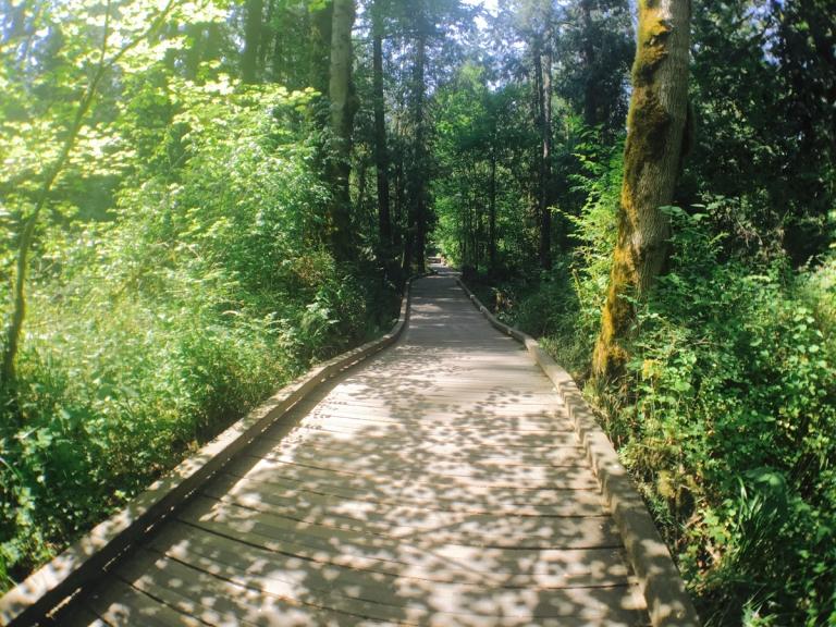 Tualatin Hills Nature Park - Oyako Portland2