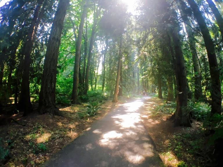 Tualatin Hills Nature Park - Oyako Portland3