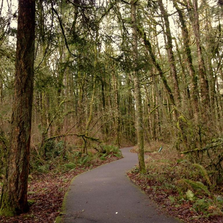 Tualatin Hills Nature Park - Oyako Portland7