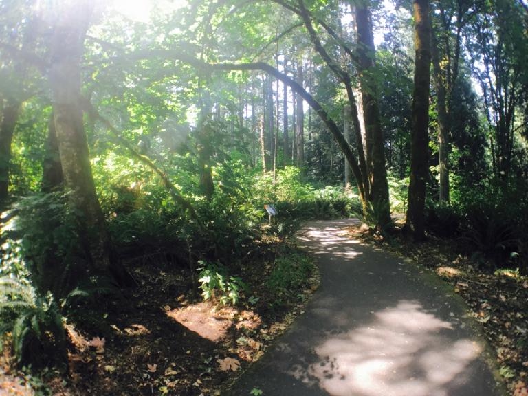 Tualatin Hills Nature Park - Oyako Portland8