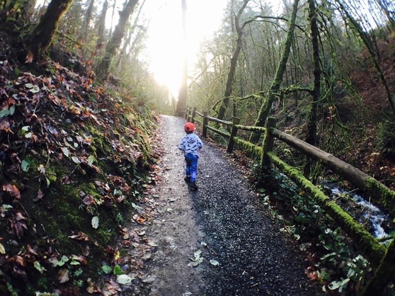 Lower Macleay Park – OYAKO PORTLAND11
