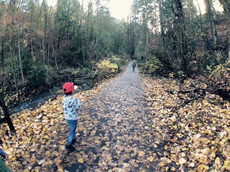 Lower Macleay Park – OYAKO PORTLAND4