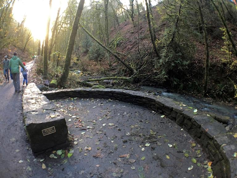 Lower Macleay Park – OYAKO PORTLAND9