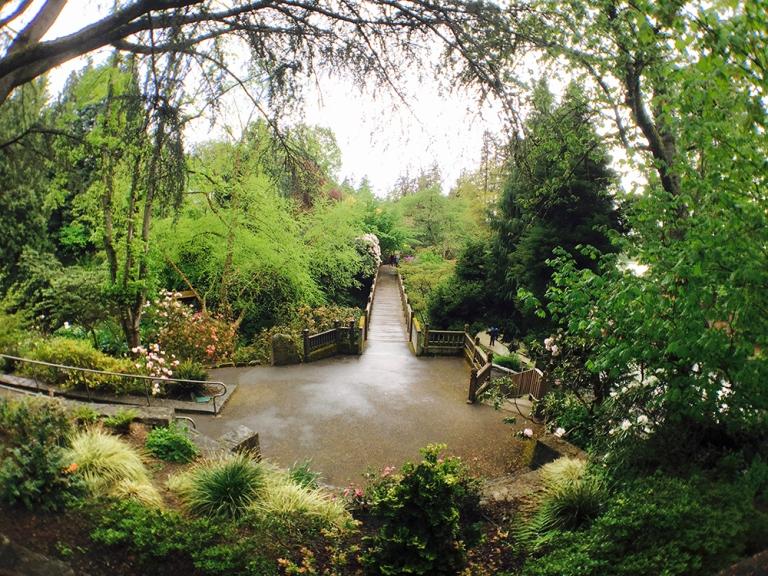 Crystal Springs Rhododendron Garden- Portland Oregon - Oyako Portland1