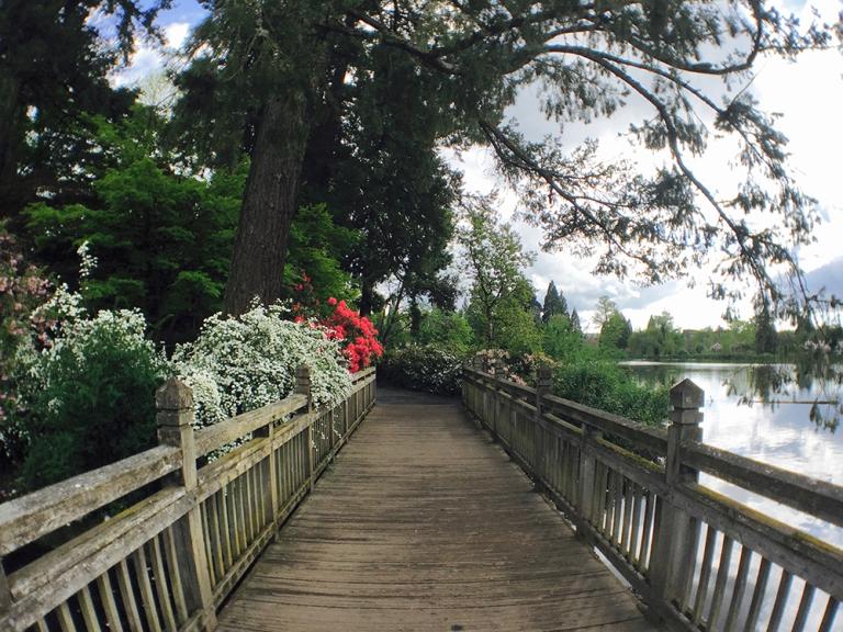 Crystal Springs Rhododendron Garden- Portland Oregon - Oyako Portland10