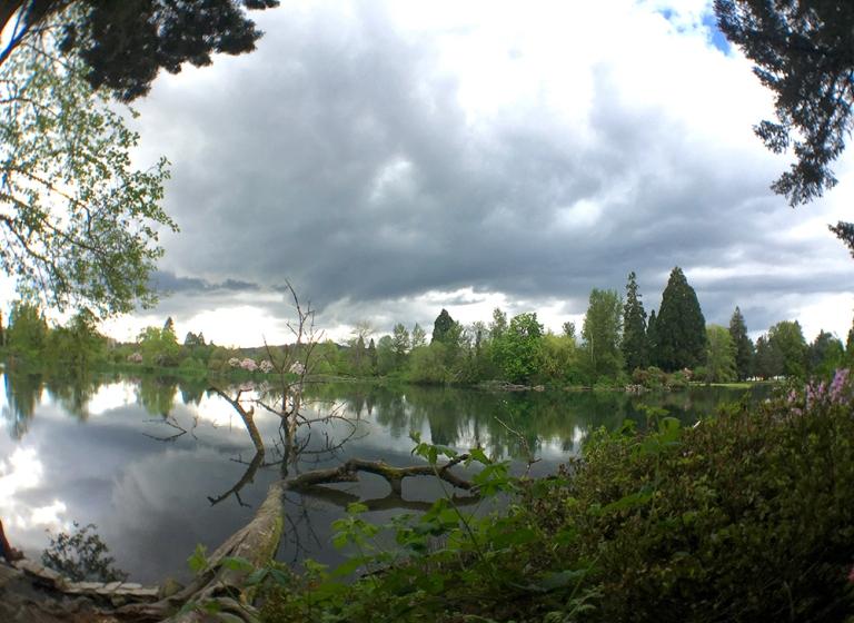 Crystal Springs Rhododendron Garden- Portland Oregon - Oyako Portland14
