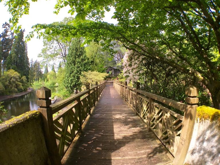 Crystal Springs Rhododendron Garden- Portland Oregon - Oyako Portland5