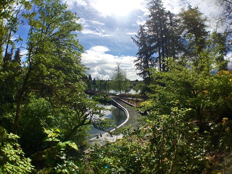 Crystal Springs Rhododendron Garden- Portland Oregon - Oyako Portland9