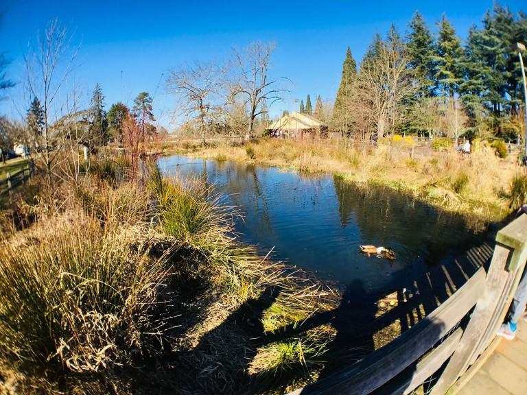 Westmoreland Park Nature Playground - Oyako Portland2