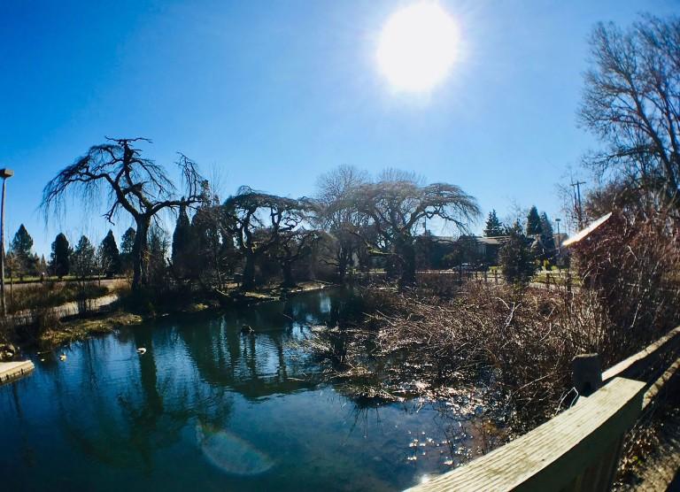 Westmoreland Park Nature Playground - Oyako Portland3